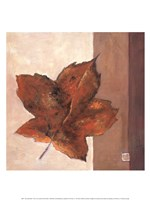 Leaf Impression - Rust Fine-Art Print