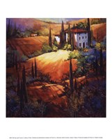 Morning Light Tuscany Fine-Art Print
