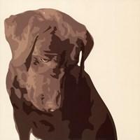 Chocolate Labrador Fine-Art Print
