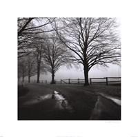 After the Rain Fine-Art Print