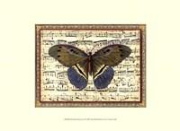 Butterfly Harmony II Fine-Art Print