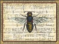 Bumblebee Harmony II Fine-Art Print