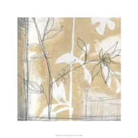 Neutral Garden Abstract IV Fine-Art Print