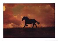 The Forgotten Horse Fine-Art Print