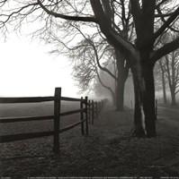 Corner Fence Fine-Art Print