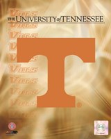 2008 University of Tennessee Logo Fine-Art Print