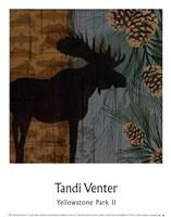 Yellowstone Park II Fine-Art Print