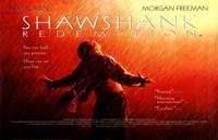 The Shawshank Redemption Freedom Wide Fine-Art Print