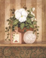 Pansy and Shell Fine-Art Print