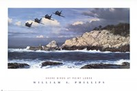 Shorebirds at Point Lobos Fine-Art Print