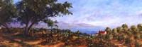 Lakeside Olives Fine-Art Print