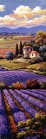 Fields Of Lavender I Fine-Art Print