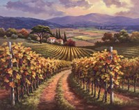Vineyard Hill I Fine-Art Print