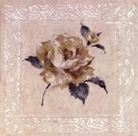 Jardin Rose ll Fine-Art Print