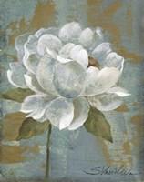 Peony Tile I Fine-Art Print