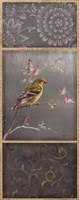 Female Goldfinch Fine-Art Print