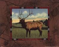 Elk I Fine-Art Print