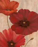Poppy Trio I Fine-Art Print