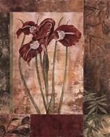 Jeweled Iris I Fine-Art Print