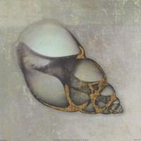 Neptune's Garden III Fine-Art Print