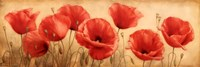 Poppies Grace I Fine-Art Print