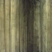 Shades of Sage Fine-Art Print