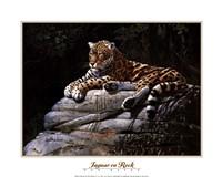 Jaguar on Rock Fine-Art Print