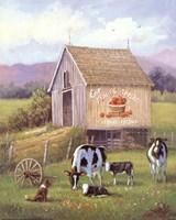 Annie's Home Grown Apples Fine-Art Print