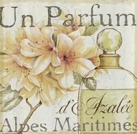 Fleurs and Parfum III Fine-Art Print