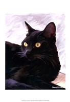 Black Cat Portrait Fine-Art Print