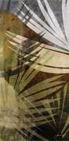 Palm Frond II Fine-Art Print