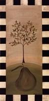 Country Pear Fine-Art Print