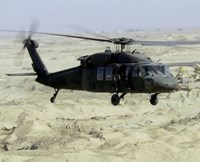 UH-60 Black Hawk United States Army Fine-Art Print