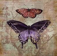 Vintage Butterflies IV Fine-Art Print