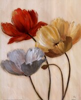 Poppy Palette II Fine-Art Print