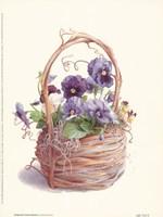 Grapevine Pansy Basket Fine-Art Print