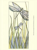Small Gossamer Dragonflies II (P) Fine-Art Print