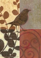 Damask Sparrow Fine-Art Print