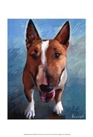Spike Bull Terrier Fine-Art Print