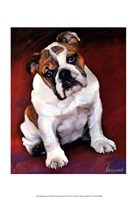 Bulldog Baby Fine-Art Print