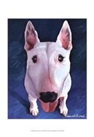 Bull Terrier Bronson Fine-Art Print