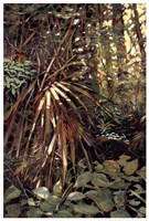 My Jungle I Fine-Art Print