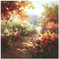 Colors of Summer Fine-Art Print