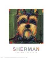 Sherman Fine-Art Print