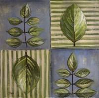 Natura II Fine-Art Print