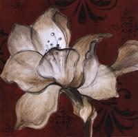 Amaryllis on Red II Fine-Art Print