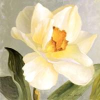 Daffodil Sky I Fine-Art Print
