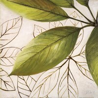 Fresh Leaves I Fine-Art Print