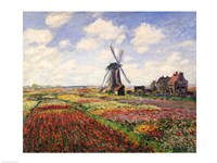 Tulip Fields with the Rijnsburg Windmill, 1886 Fine-Art Print