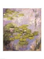 Nympheas, 1916-19 Fine-Art Print